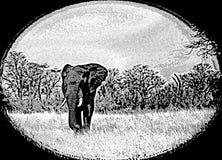 Arte artístico de un elefante en los llanos con un marco negro oval Foto de archivo libre de regalías