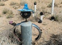 Arte classica dell'iarda del deserto di sud-ovest Fotografia Stock Libera da Diritti