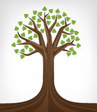 Arte conceptual verde frondosa da árvore de Linden isolada Imagens de Stock
