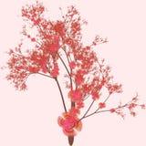 Arte da árvore de cereja ilustração royalty free