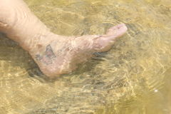 Arte da borboleta no pé de uma mulher Imagem de Stock