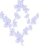 arte da flora Imagens de Stock