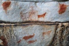 Arte da rocha nas montanhas de Cederberg Fotografia de Stock