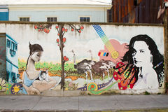Arte da rua de Valparaiso Fotografia de Stock