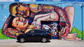Arte da rua dos grafittis na vizinhança de Wynwood de Miami Fotos de Stock