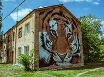 Arte da rua na construção velha com uma imagem de um focinho do tigre na parede fotografia de stock
