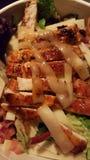 Arte da salada imagem de stock royalty free