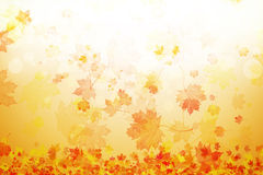 Arte das folhas de outono ilustração stock