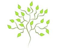 Arte de clip verde aislado del árbol ilustración del vector