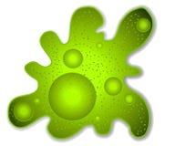 Arte de clip verde del microbio de la ameba Foto de archivo libre de regalías