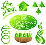 Arte de grampo verde da ecologia ajustada/eps Fotografia de Stock Royalty Free