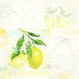 Arte de la cocina Ejemplo dibujado mano de la acuarela de ilustración del vector