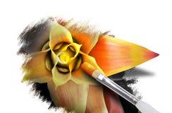 Arte de la flor del resorte con la pintura en blanco Foto de archivo libre de regalías