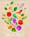 Arte de la mezcla de la ensalada del cartel Foto de archivo libre de regalías