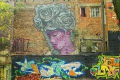 Arte de la pintada Foto de archivo libre de regalías