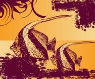 Arte de la piscina de los pescados Fotos de archivo libres de regalías
