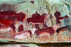 Arte de la roca del bosquimano Foto de archivo libre de regalías