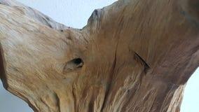 Arte de madera del diseño Imagenes de archivo