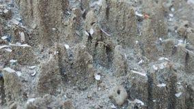 Arte de papel de la arena Fotos de archivo libres de regalías