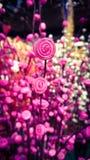Arte de Rose fotografía de archivo libre de regalías