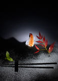 Arte dei sushi Fotografia Stock