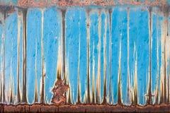 Arte del buey Foto de archivo
