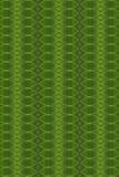 Arte del concepto de las hojas. Foto de archivo libre de regalías