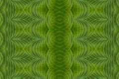 Arte del concepto verde de la hoja y de la idea Imágenes de archivo libres de regalías