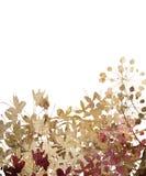 Arte del fiore nella struttura di pietra isolata Immagine Stock Libera da Diritti
