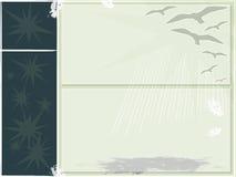 Arte del fondo de la gaviota Imagen de archivo