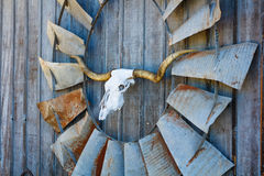 Arte del granaio del Texas Fotografia Stock Libera da Diritti