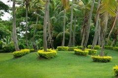 Arte del jardín de Fiji foto de archivo
