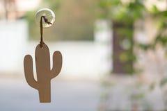 Arte del mini cactus con la ventosa imagen de archivo