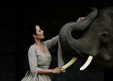 Arte del retrato de mujeres y de elefantes hermosos Imagen de archivo