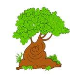 Arte dell'illustrazione dell'albero di vettore sveglia Fotografia Stock Libera da Diritti