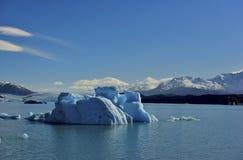 Arte dell'incisione del ghiaccio Fotografie Stock