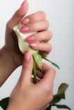 Arte dell'unghia e del manicure Fotografie Stock