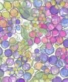 Arte della frutta della carta da parati dell'uva della vigna del vino Fotografia Stock Libera da Diritti