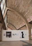 Arte della galleria 798 alla via, Pechino il 25 maggio 2013. Immagini Stock Libere da Diritti