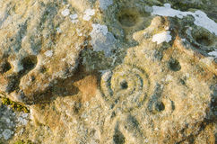 Arte della roccia dell'anello e della tazza Immagine Stock