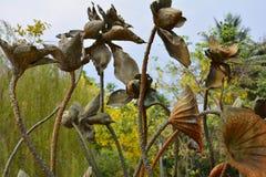 Arte della statua di Lotus nel giardino Fotografia Stock Libera da Diritti