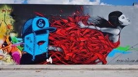 Arte della via dei graffiti nella vicinanza di Wynwood di Miami Fotografie Stock