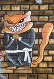 Arte della via del gatto di karatè a Berlino immagini stock libere da diritti