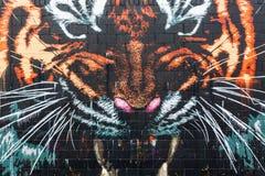 Arte della via a Glasgow, Regno Unito Immagine Stock