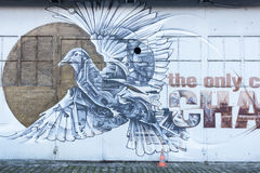 Arte della via, piccione Fotografia Stock
