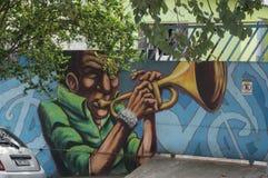 Arte della via a Sao Paulo immagini stock libere da diritti