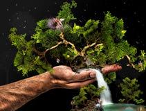 Arte di fantasia Fotografia Stock