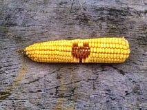 arte do coração do milho Fotografia de Stock Royalty Free