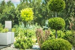 Arte do Topiary de arbustos do grampeamento Imagens de Stock
