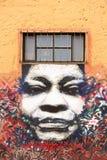 Arte dos grafittis e da rua em Bogotá Imagens de Stock